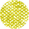 Vanadium Yellow Light 008B