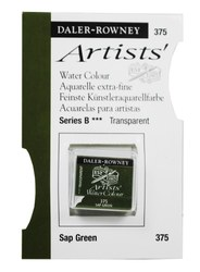 Watercolour -Professional: Daler-Rowney Rown Awc H-pan Sap Green